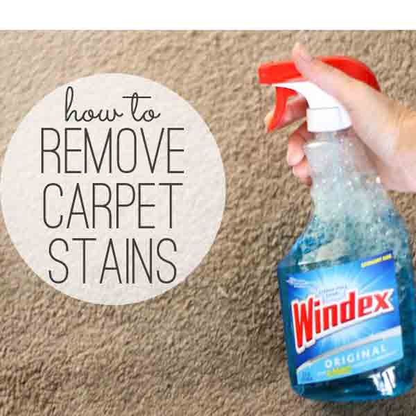 clean carpet stains